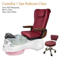Camellia 1 Luxury Spa Pedicure Chair with Magnetic Jet – Shiatsu Massage System 247x247 - Equipment nail salon furniture manicure pedicure