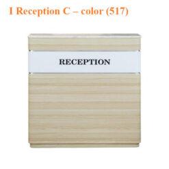 I Reception C – 43 inches – color (517)