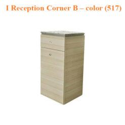 I Reception Corner B – 18 inches – color (517)