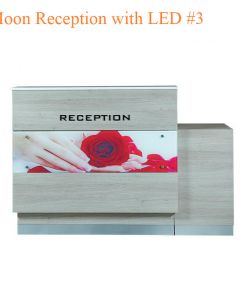 Moon Reception with LED #3 – 60 inches