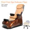 First Class Luxury Spa Pedicure Chair with Magnetic Jet – Shiatsu Massage System 02 100x100 - Ghế Làm Chân Cao Cấp First Class Dùng Jet Nam Châm Và Hệ Thống Mát-Xa Shiatsu
