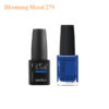 Kinetics – Shiled Gel And SolarGel Polish Duo Blooming Mood 279