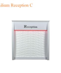 Lilium Reception C – 42 inches
