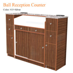 Ball Reception Counter