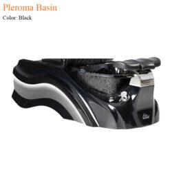 Pleroma Basin